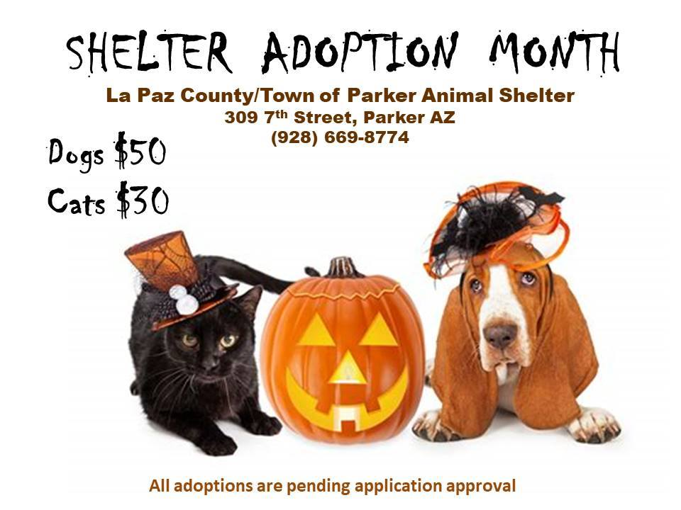 Animal Control October 2018 Shelter Adoption Month Flyer