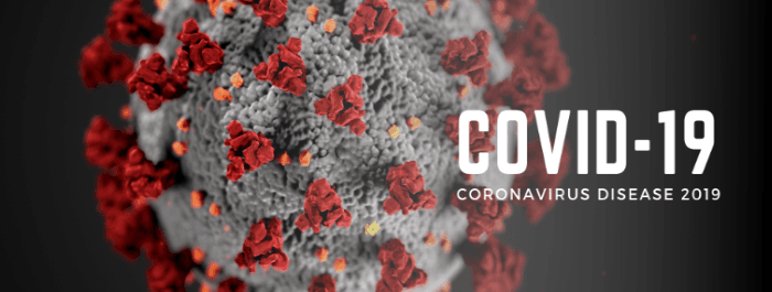 Coronavirus banner that links to website Opens in new window